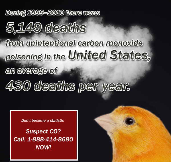 Statistics on carbon monoxide deaths